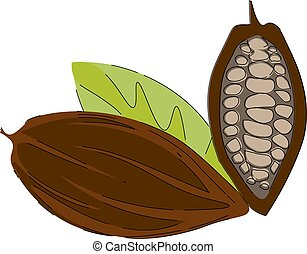 Cacao nibs/Clipart of cacao beans vector or color ...