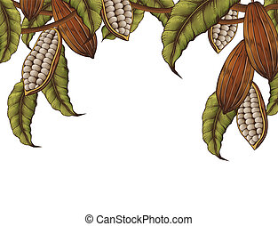 Cacao plant decorated frame on white background in engraving...