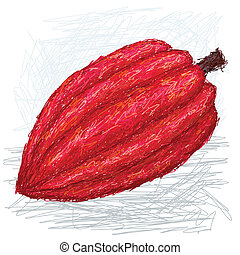 cacao pod - closeup illustration of cacao fruit with...