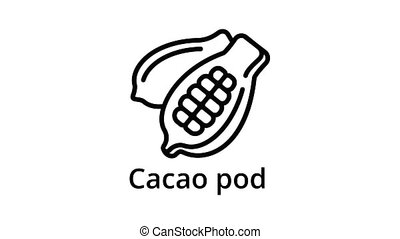 Cacao pod icon animation outline best object on white background