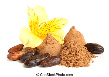 Cacao powder, cacao beans, and chocolate sweets with flower of alstroemeria