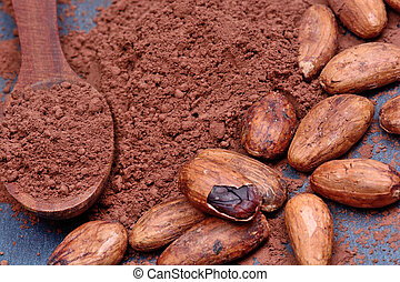 Cacao powder in a wooden spoon with beans on slate