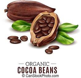 cacao, realistico, composizione