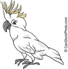 cacatoès, perroquet, dessin animé,  Illustration