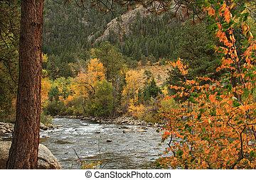 Cache La Poudre River in northern Colorado, autumn