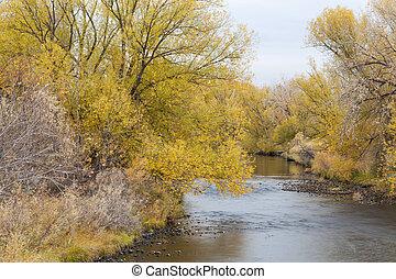 Cache la Poudre River in Fort Collins, Colorado, late fall scenery