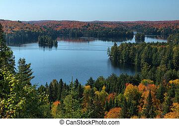 Cache Lake Algonquin Park