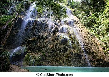 cachoeira, em, oslob, filipinas.