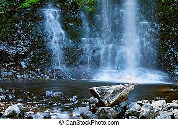 cachoeira, floresta