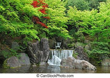 cachoeira, jardim zen, japoneses