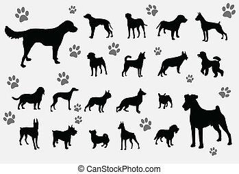 cachorros, cobrança