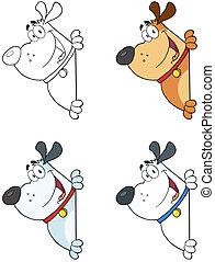 cachorros, olhar ao redor, um, sinal branco