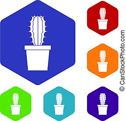 Cactaceae cactus icons set hexagon isolated vector ...