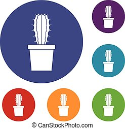 Cactaceae cactus icons set in flat circle red, blue and ...