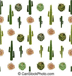 a seamless illustration of cactus and tumbleweed pattern