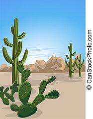 Cactus and Desert