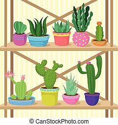 Cactus and succulents home plants in pots on wooden shelves vector Illustration