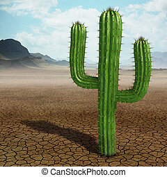 Cactus - Very high resolution 3d rendering of a cactus in...