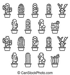 Cactus collection in illustration