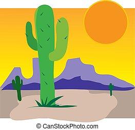 cactus, coucher soleil