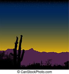 Saguaro cactus desert mountain range at nightfall or dawn.