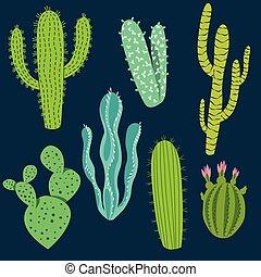 cactus, divers, conceptions, plante