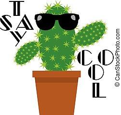 cactus funny