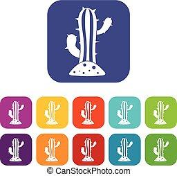 Cactus icons set flat