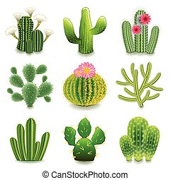 Cactus icons detailed photo realistic vector set