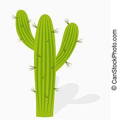 Cactus - vector illustration