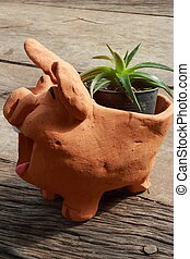 Cactus in a black cup pottery pig