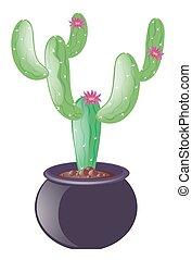 Cactus in clay pot illustration