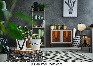 Cactus in decorative pot