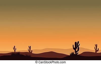 Cactus in desert silhouette