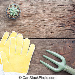 Cactus in pot with garden tools on wooden background