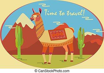 cactus., inscription:, sur, america., lama, cartel, llama, estilizado, turista, animal, tiempo, de motivación, vicuña, alpaca, viaje, guanaco, montañas, carácter