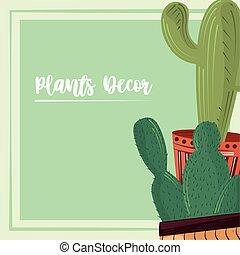 cactus plants and succulent in pots nature decoration card