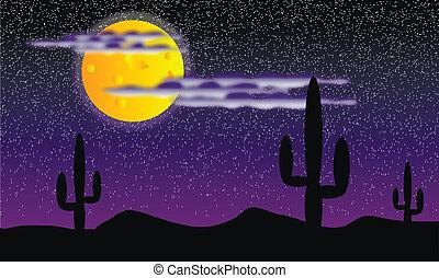 cactus, plants., disertare notte