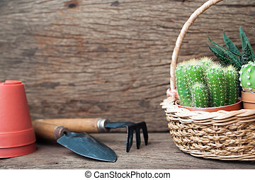 Cactus plants in basket and garden tools on wooden table, Hobby and Lifestyle concept