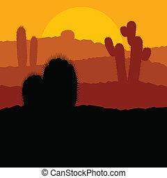 Cactus plants in Mexico desert sunset vector