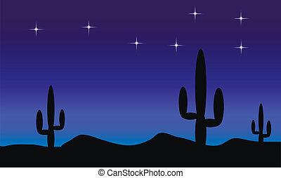 cactus, plants., nuit désertique