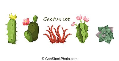 Cactus set isolated on white background Vector