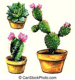 cactus, set, van, succulent, vrijstaand, op, een, witte