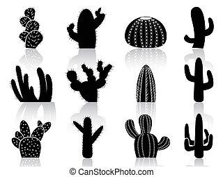 cactus, silhouettes