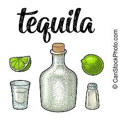 cactus, verre, botlle, vendange, gravure, lime., sel, tequila.