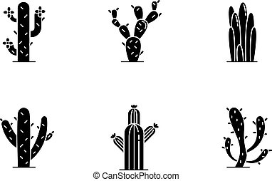 Cactuses black glyph icons set on white space. American ...