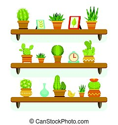 Cactuses in pots stand on the shelves. Decorative plants set isolate on white background. Vector illustrations set
