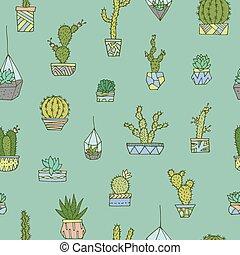 Cactuses, succulents set.