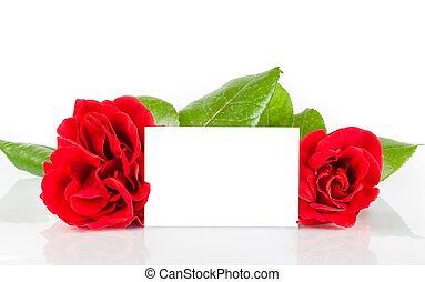 cadeau, texte, deux, roses, arrière-plan rouge, vide, blanc, carte