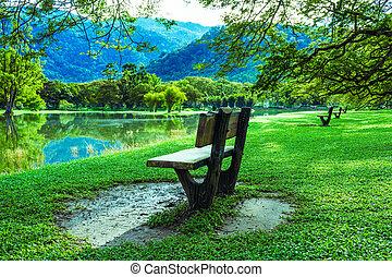 cadeira madeira, em, lago, jardim
